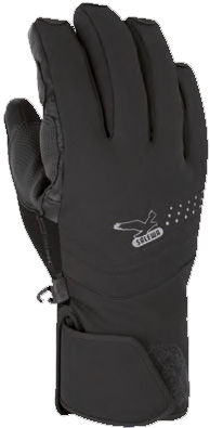 Перчатки горные Salewa Alpine Gloves BATURA PTX M GLOVE black