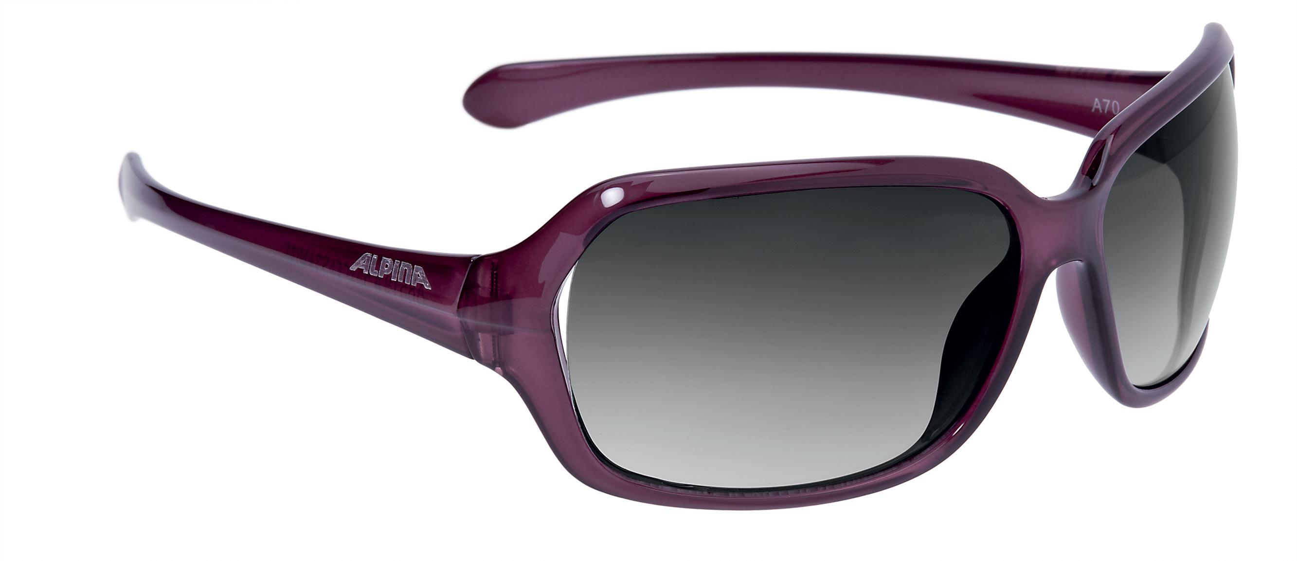 Очки солнцезащитные Alpina 2017 A 70 dark rose transparent 1225849  - купить со скидкой