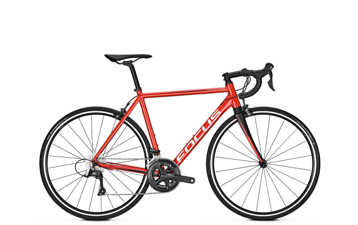 Велосипед Focus Izalco Race Al Sora 2018 Hotchiliredmatt