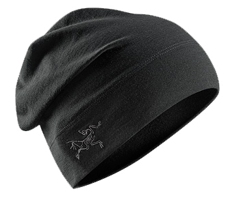Шапка Arcteryx 2012-13 Rho LTW Long Toque (Black) черный