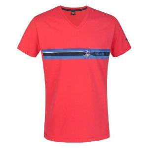 Футболка для активного отдыха Salewa ALPINE LIFE MEN SURRENDER CO M S/S TEE poppy red/0710 pr.4
