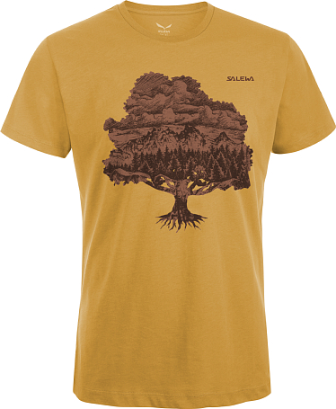 Футболка для активного отдыха Salewa Climbing MAGIC WOOD CO M S/S TEE honey
