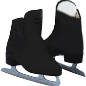 Коньки фигурныеКоньки ледовые<br>Очень популярные коньки для любительского катания. Комфортные и легкие, высокое качество ротменяемых материалов. <br>Верх изготовлен из синтетической кожи, внутренняя отделка дышащими влагоотводящими материалами. <br>Лезвие A-N.<br><br>Пол: Унисекс<br>Возраст: Взрослый