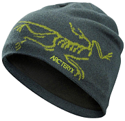 Шапка Arcteryx 2018-19 Bird Head Toque Shorepine/Titanite