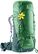 Рюкзак Deuter 2020-21 Aircontact 60+10 SL Leaf/Forest