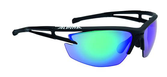 Купить Очки солнцезащитные Alpina 2017 ALPINA EYE-5 HR CM+ black matt, солнцезащитные, 1180451