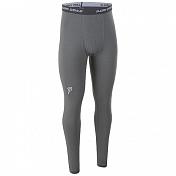 Брюки Bjorn Daehlie UNDERWEAR Pants ACTIVE Gargoyle (Серый)