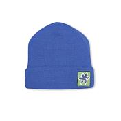 ШапкаГоловные уборы<br>Шапка-бини, прекрасное дополнение к городской одежде.<br>Состав пряжи: 50% мериносовая шерсть, 50% акрил<br>Цвет: голубой<br><br>Пол: Унисекс<br>Возраст: Взрослый<br>Вид: шапка
