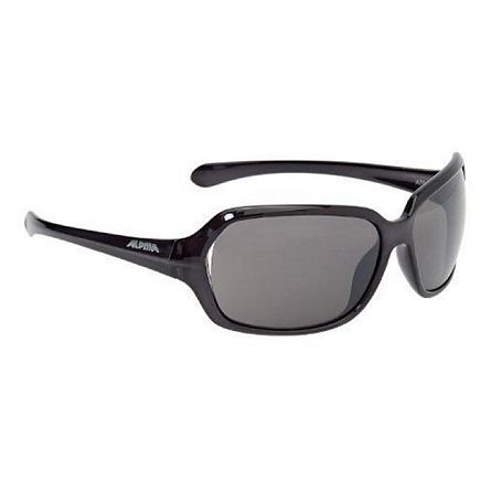 Купить Очки солнцезащитные Alpina 2017 A 70 black transparent 1225845