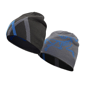 Шапка Arcteryx 2016-17 Arc Mountain Toque Magnet/tungsten