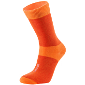 Носки Bjorn Daehlie 2016-17 Sock ATHLETE LIGHT Red