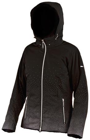 Купить Куртка горнолыжная DESCENTE 2010-11 P.C. (черный/серебро) Одежда 663958