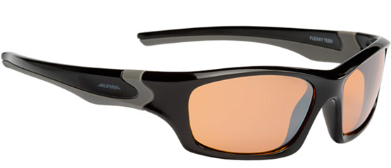 Купить Очки солнцезащитные Alpina JUNIOR / KIDS Flexxy Teen black-grey/orange mirror S3 1131852